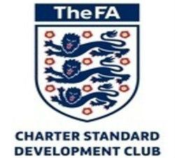 Chartered Standard Football Club Dulwich Hamlet Juniors